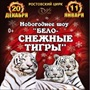 """Новогоднее шоу """"Бело-снежные тигры"""""""